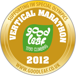 Gold medal for 2012 Goodleaf Vertical Marathon