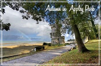 Autumn in Appley Park