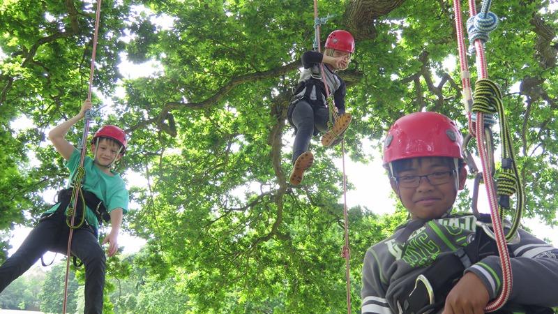 children tree climbing