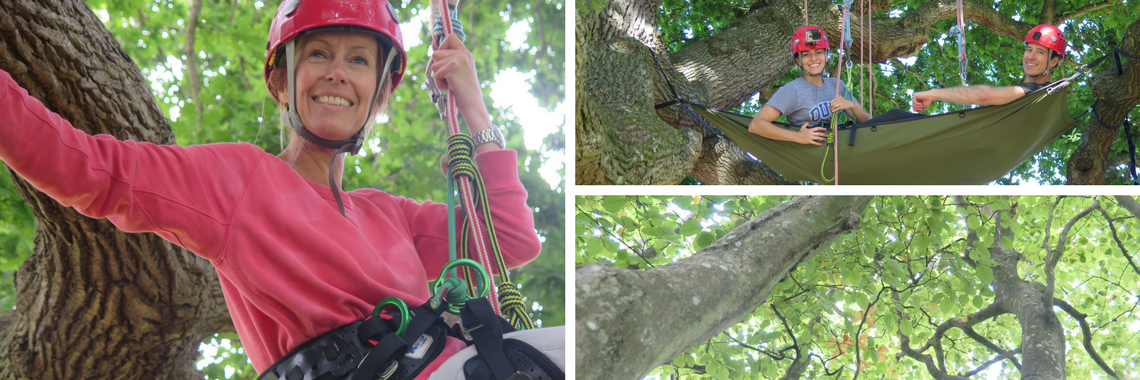 tree climbers, woman in tree, tree hammock
