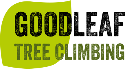 Goodleaf tree climbing activities
