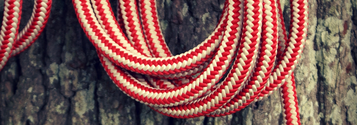 reserve online page, red and white rope, tree bark