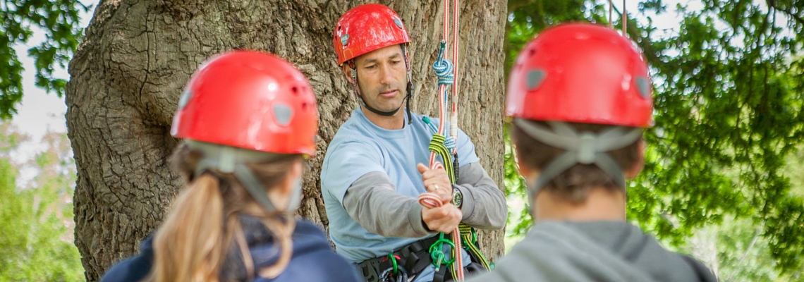 three day tree climbing course header