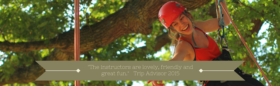 About Goodleaf Tree CLimbing