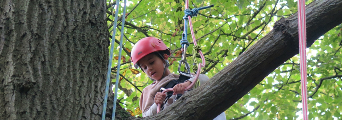 accessible tree climbing, tree climbing and disability