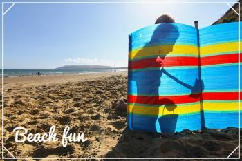 Beach and windbreak