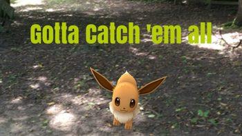 Pokemon Go in Appley Park, Ryde