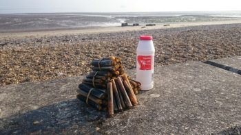 razor clams walk - different things to do on the Isle of Wight