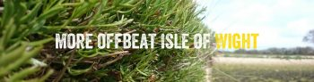 More offbeat Isle of Wight - different things to do on the Isle of Wight foraging walk