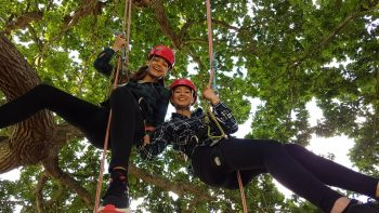 tree climbing women