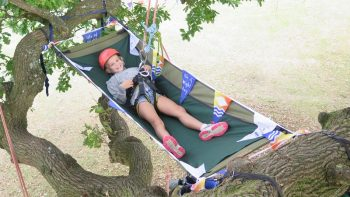 Appley Park, trees, park, grass, blue skies