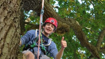 thumbs up for tree climbing