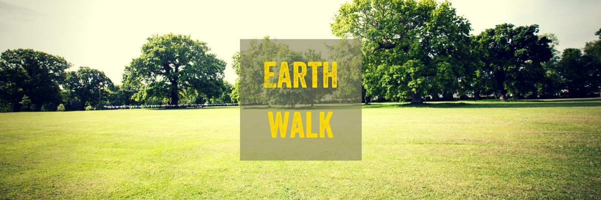 earth walk image