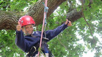 boy tree climbing