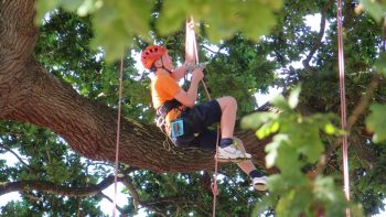 man climbing tree with rope and harness, autism friendly fridays at Goodleaf tree climbing