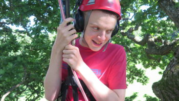 man tree climbing wearing helmet with ear defenders, goodleaf tree climbing Isle of Wight